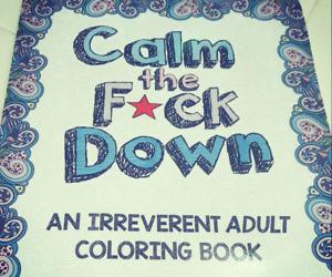 calm-the-fuck-down-coloring-book-300x250