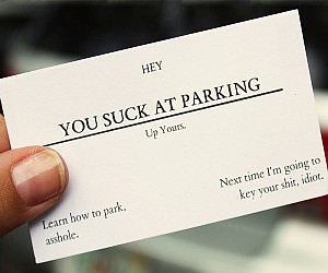 you-suck-at-parking-business-cards-300x250